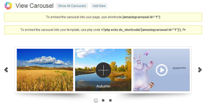 WordPress jQuery carousel plugin
